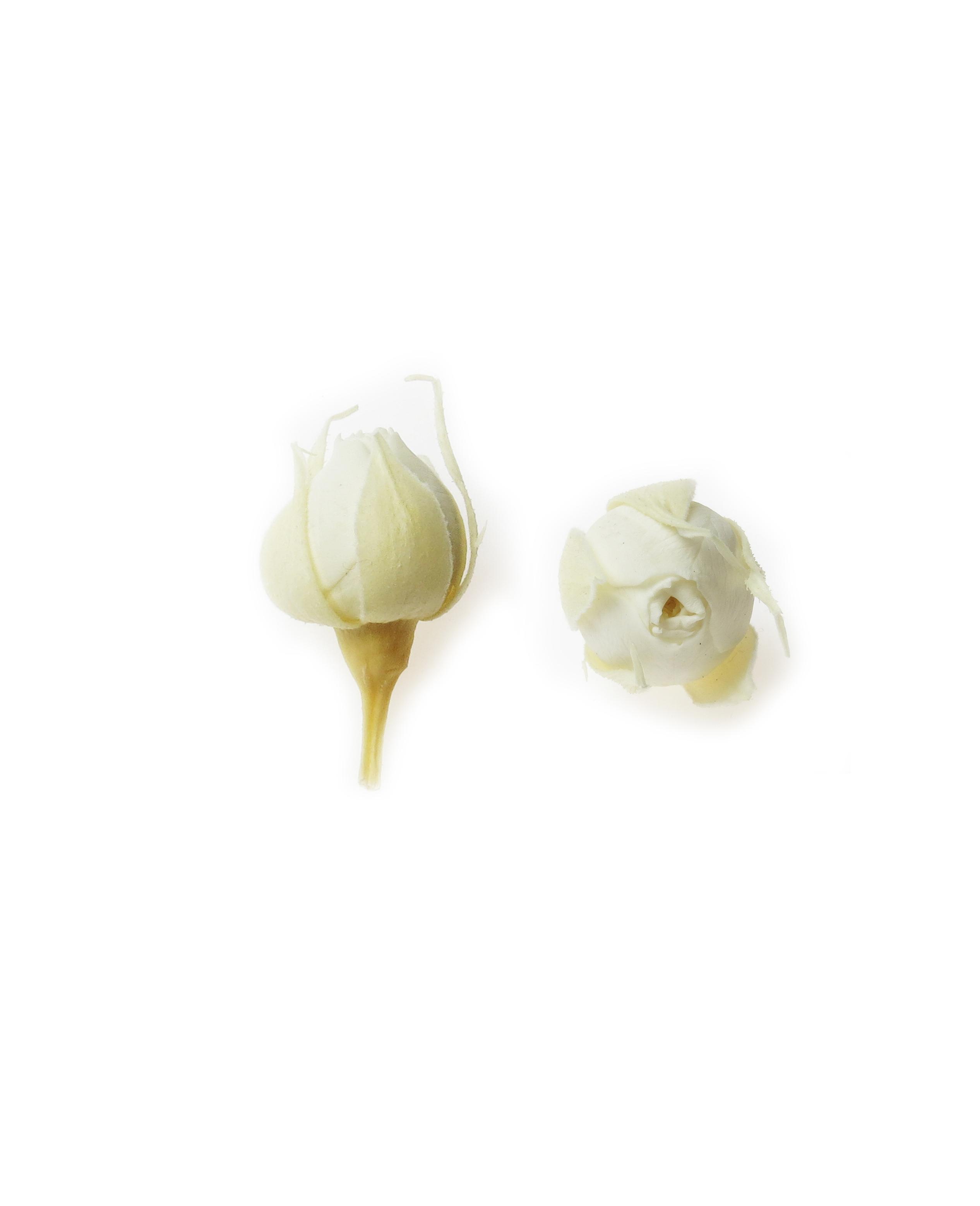 Роза микро,  цвет белый, H-2 см D-2 см 20шт/упак