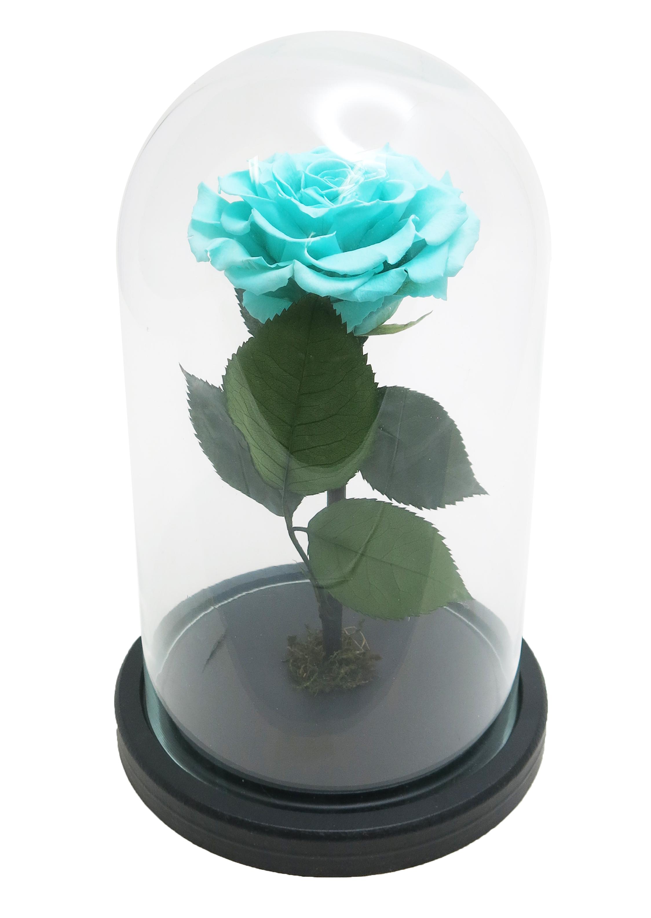 """Роза стеклянной колбе 26 см высота 15 см диаметр в стиле """"Красавица и чудовище"""" цвет голубой"""